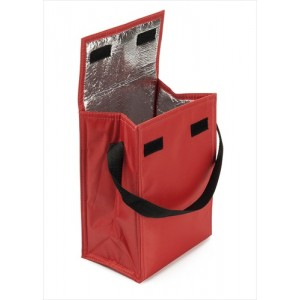 Cooler/Lunch Bag - Red
